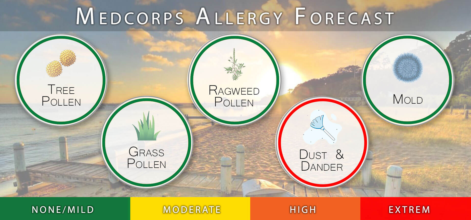 medcorps allergy forecast image
